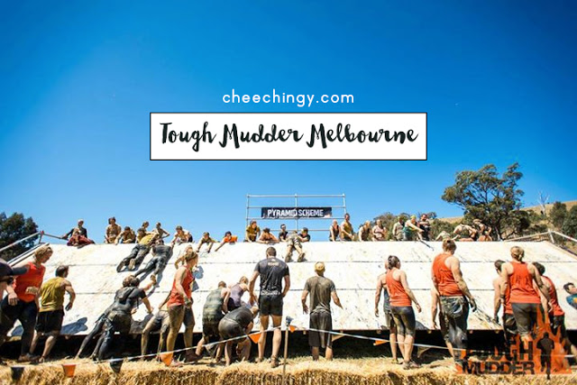 #cheechingytravels Tough Mudder Melbourne 2015